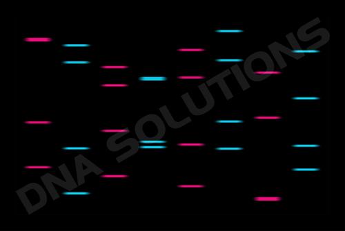 Design Personnalise du Portrait ADN