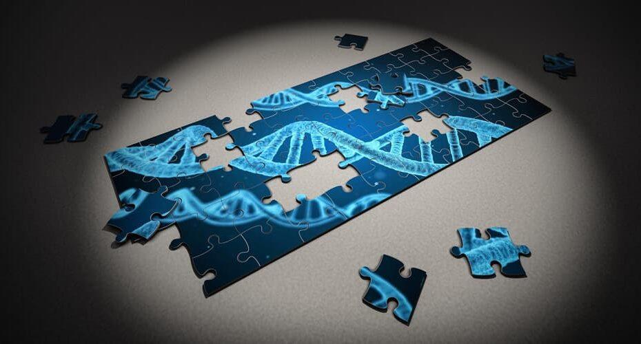 Le test par PCR