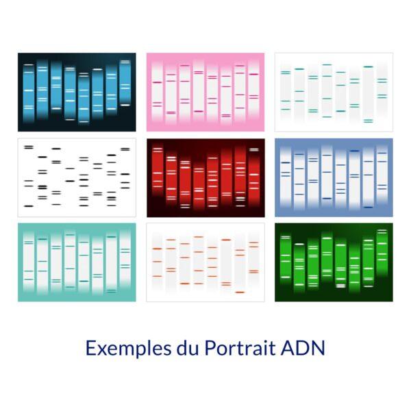 Produit Exemples du Portrait ADN